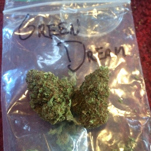 Green Dream Shake Logo